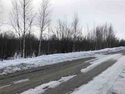 Nenana AK Residential Lots & Land For Sale: $14,900