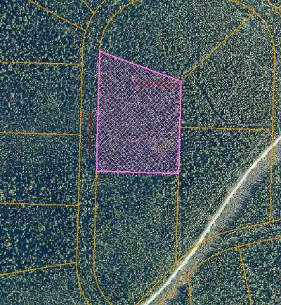 Fairbanks Residential Lots & Land For Sale: Nhn Hayes Creek Road