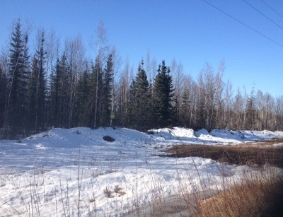 North Pole Residential Lots & Land For Sale: Nhn Bradway Road