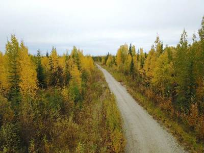 North Pole AK Residential Lots & Land For Sale: $219,900