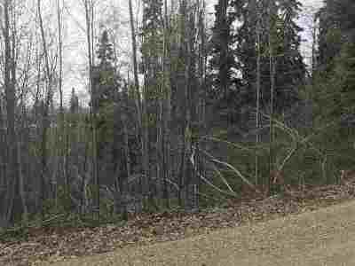Fairbanks Residential Lots & Land For Sale: Nhn Reeburgh Drive