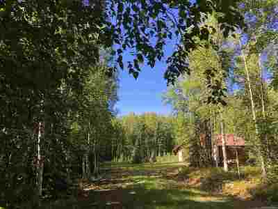Fairbanks Single Family Home For Sale: 499 Wild Moon Trail