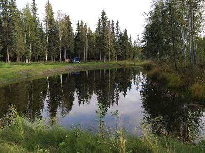 Fairbanks Residential Lots & Land For Sale: 3593 Rosie Creek Road