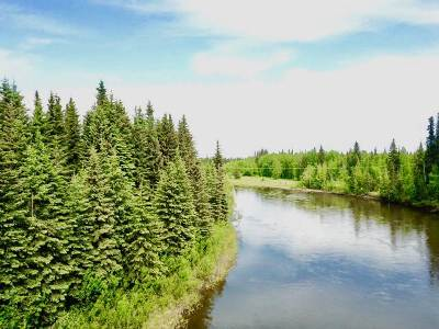 Fairbanks Residential Lots & Land For Sale: Nhn L10b1 Bate Street