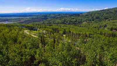 Fairbanks Residential Lots & Land For Sale: Nhn Bella Vista Drive