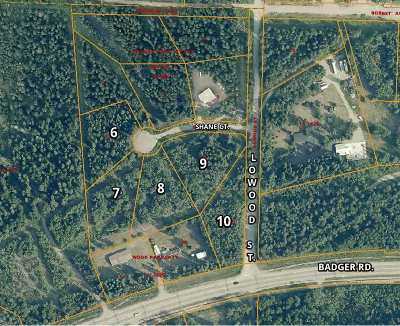 North Pole Residential Lots & Land For Sale: Nhn Shane Court