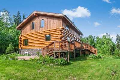 Fairbanks Single Family Home For Sale: 315 Ram's Curl Court