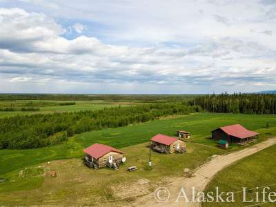 Nenana Single Family Home For Sale: Nenana 315 Parks Highway