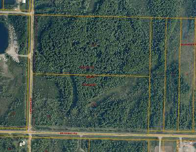 North Pole Residential Lots & Land For Sale: Nhn Blueberry Avenue