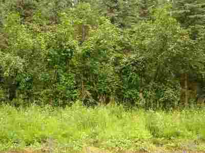 Residential Lots & Land For Sale: Nhn Williston Way