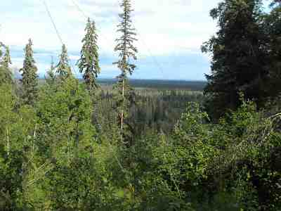 Fairbanks Residential Lots & Land For Sale: Nhn Reschaven Drive