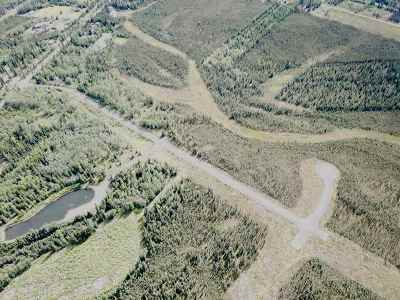 North Pole AK Residential Lots & Land For Sale: $395,000