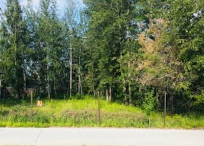 Residential Lots & Land For Sale: 1636 Stacia Street