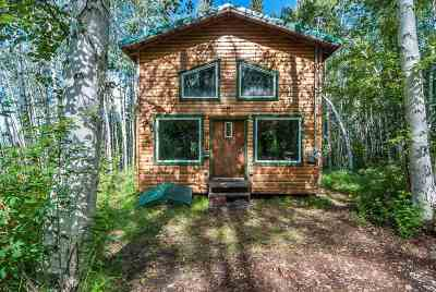 Fairbanks Single Family Home For Sale: 1920 Lynx Lane