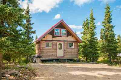 Denali Borough Single Family Home For Sale: Mile 1 Hilltop Road
