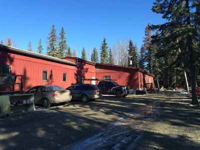 North Pole, Fairbanks, Ester, Salcha Rental For Rent: 1782 Army Road