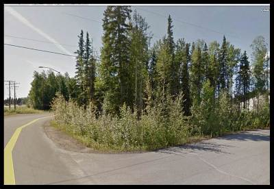 Commercial Lots & Land For Sale: 605 Chief Thomas Drive