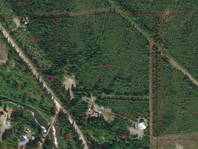Residential Lots & Land For Sale: 5974 Old Valdez Trail