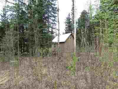 Delta Junction Residential Lots & Land For Sale: Tr C-3 Tanana Loop Extension