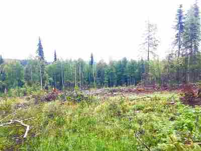 Fairbanks Residential Lots & Land For Sale: 6010 Telemark Trail