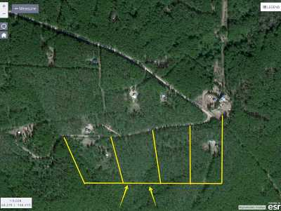 Delta Junction Residential Lots & Land For Sale: Nhn Tenderfoot Court