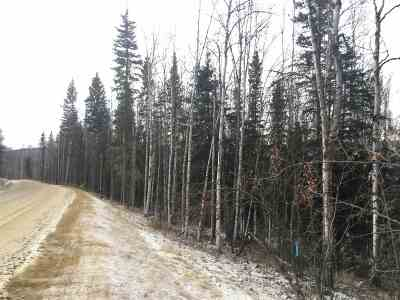Fairbanks Residential Lots & Land For Sale: Nhn Northridge Road