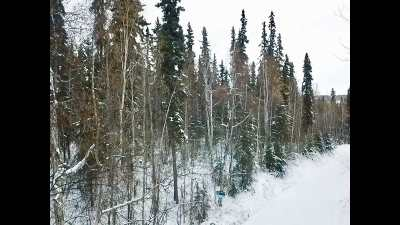 Fairbanks AK Residential Lots & Land For Sale: $42,900
