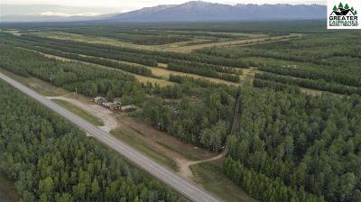 Delta Junction Residential Lots & Land For Sale: 6274 Alaska Highway