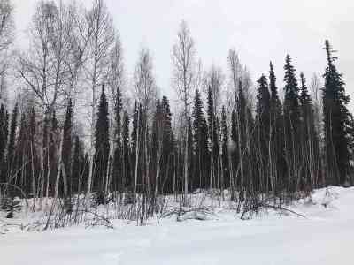 North Pole Residential Lots & Land For Sale: Lot 26 Christine Drive