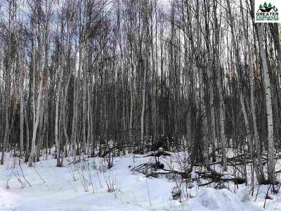 North Pole Commercial Lots & Land For Sale: 2921 Glacier State Drive