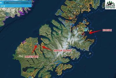 Nhn Amook Island, Kodiak, AK 99624 - Listing #:140448