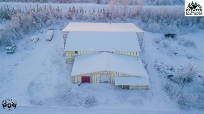 North Pole Commercial For Sale: 1651 Levee Way