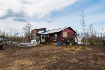 Denali Borough Single Family Home For Sale: Nhn Kobe Ag Road