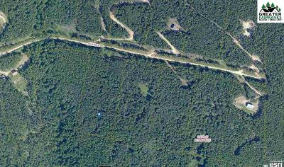 Fairbanks Residential Lots & Land For Sale: 1177 Leuthold Drive