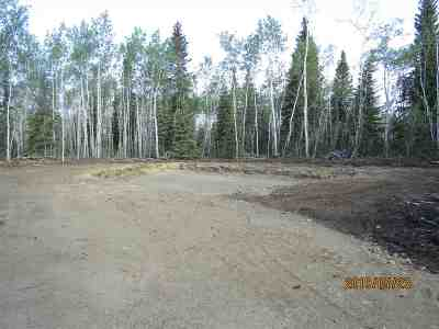 Delta Junction Residential Lots & Land For Sale: L10 B3 Aspen Street