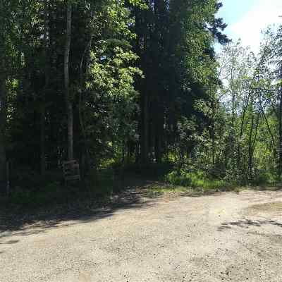 Residential Lots & Land For Sale: 4625 Tolovana Drive
