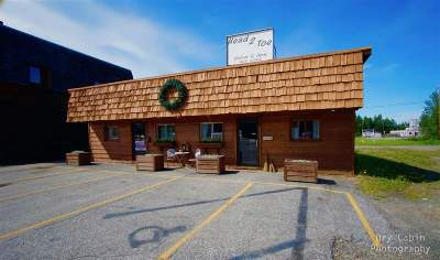 North Pole Commercial For Sale: 131 Santa Claus Lane