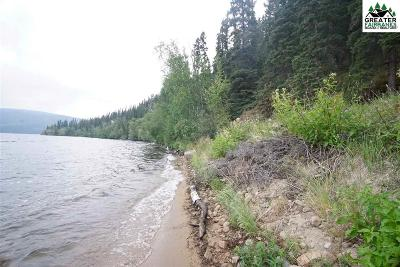 Residential Lots & Land For Sale: Lot 2 George Lake