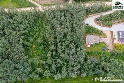 Fairbanks Residential Lots & Land For Sale: Nhn Wideview Road