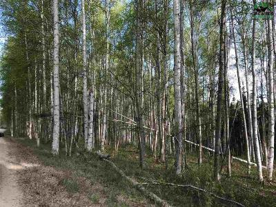Fairbanks AK Residential Lots & Land For Sale: $43,000