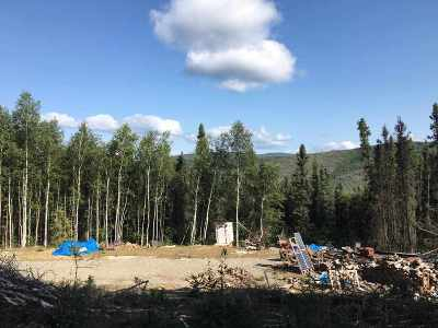 Residential Lots & Land For Sale: 5290 Old Ridge Trail