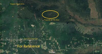 Fairbanks Residential Lots & Land For Sale: Nhn Hopper Creek