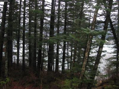 Juneau AK Residential Lots & Land For Sale: $174,000