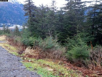 Juneau Borough Residential Lots & Land For Sale: Nhn Pioneer Avenue