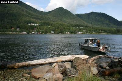 Ketchikan Gateway Borough Residential Lots & Land For Sale: Nsa Pennock Island