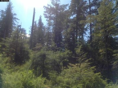 Residential Lots & Land For Sale: Lot 4 Chum Creek Drive