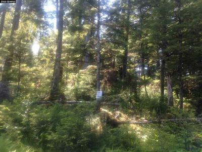 Residential Lots & Land For Sale: Lot 3 Chum Creek Drive
