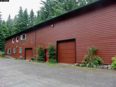 Juneau Single Family Home For Sale: 8485 Forest Lane
