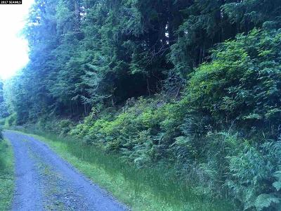 Ketchikan Residential Lots & Land For Sale: South Tongass Highway