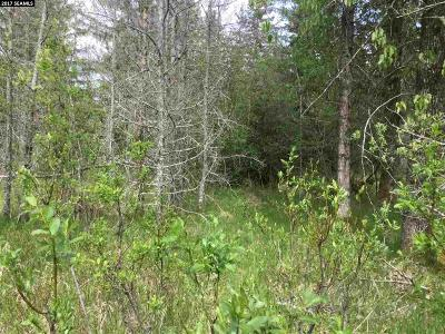 Residential Lots & Land For Sale: Nhn Sunny Downtown Gustavus